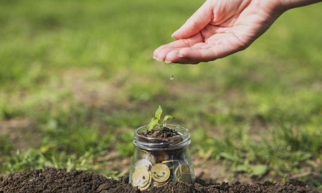 El ciudadano como actor fundamental para el fundraising